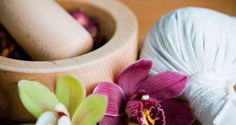 lavendar-thai